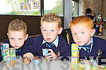 Pictured during their first day in St Oliver's National school on Monday were Jack Avanza, Thomas Dooley and Michael McCarthy.   Copyright Kerry's Eye 2008