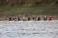 Crew: 228   University of Warwick (MacElvogue)   W Devel<br /> <br /> Quintin Head 2019<br /> <br /> To purchase this photo, or to see pricing information for Prints and Downloads, click the blue 'Add to Cart' button at the top-right of the page.