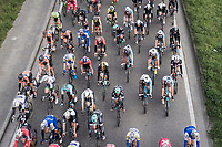 peloton from a bridge<br /> <br /> 105th Scheldeprijs 2017 (1.HC)<br /> 1 Day Race: Mol › Schoten (BEL/202km)