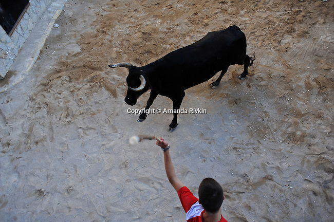 A villager prepares to strike a bull with a stick in the square outside the church during the municipal fiestas in Costur, Spain on August 19, 2009.