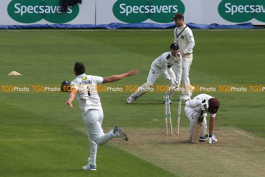 Kent bowler, Harry Podmore, celebrates bowling Surrey batsman, Scott Borthwick during Surrey CCC vs Kent CCC, Specsavers County Championship Division 1 Cricket at the Kia Oval on 7th July 2019