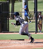 Yeison Yrizarri - 2018 AIL White Sox (Bill Mitchell)