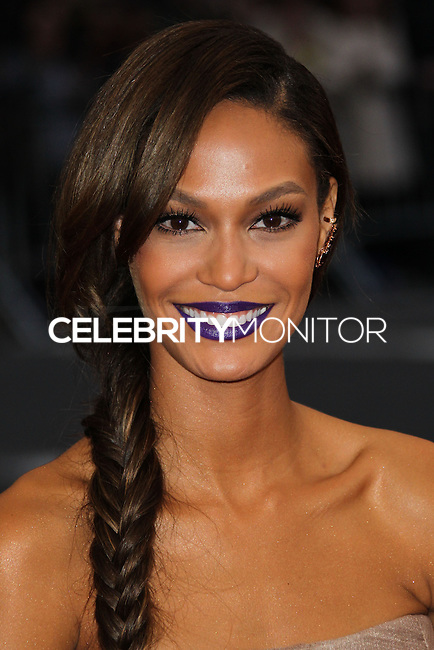 """NEW YORK CITY, NY, USA - MAY 05: Joan Smalls at the """"Charles James: Beyond Fashion"""" Costume Institute Gala held at the Metropolitan Museum of Art on May 5, 2014 in New York City, New York, United States. (Photo by Xavier Collin/Celebrity Monitor)"""