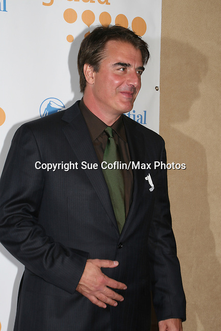 Chris Noth (Sex and the City) at the 20th Annual GLAAD Media Awards on March 28, 2009 at the New York Marriott, New York City, NY. (Photo by Sue Coflin/Max Photos)