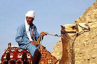 Camel and local camel rider for tourists in front of the famous Great Pyramids of Giza Egypt