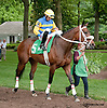 Vicarious Won before The Dashing Beauty Stakes  at Delaware Park on 6/27/13