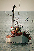 Europe/France/Bretagne/29/Finistère/Kerity: Retour au port