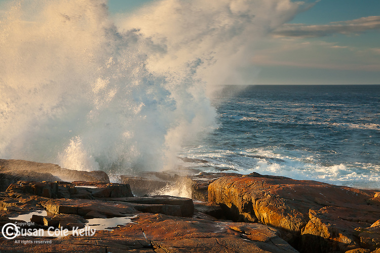 Storm waves pound the Schoodic Peninsula coast in Acadia National Park, Downeast, ME, USA