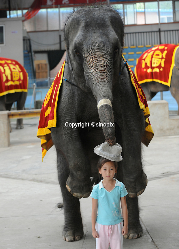 An elephant performance in a small arena at World Park, Beijing. The park displays about 100 tourist attractions in a scaled-down version from nearly 50 countries around the world, including the Tower Bridge in London, the Eiffel tower in Paris, pyramids in Egypt, etc..16 Aug 2008
