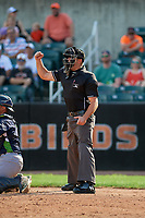 Umpire Paul Roemer calls a strike during a NY-Penn League game between the Vermont Lake Monsters and Aberdeen IronBirds on August 18, 2019 at Leidos Field at Ripken Stadium in Aberdeen, Maryland.  Vermont defeated Aberdeen 6-5.  (Mike Janes/Four Seam Images)