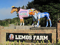 "Just in time for Mother's Day, artist Phil Davis has transformed Lemo's Horse into ""Soccer Mom"" in Half Moon Bay, California."