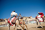 The start of a race at the 51st annual International Camel Races in Virginia City, Nevada  September 12, 2010. .CREDIT: Max Whittaker for The Wall Street Journal.CAMEL