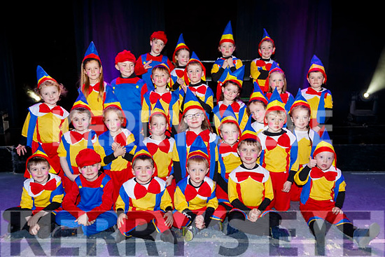 Talented performers at the Currow NS parents association musical in Killarney Racecourse on Sunday
