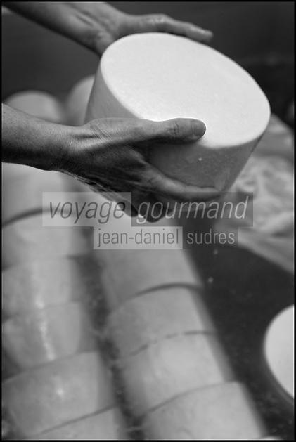 Europe/France/Aquitaine/64/Pyrénées-Atlantiques/Pays Basque/ Saint-Martin-d'Arberoue: Ferme Agerria  de Bernadette et Jean-Claude Pochelu - Préparation de l'AOC Ossau-Iraty -  Le salage: le fromage est salé en saumure, ce qui permettra d'assurer sa conservation et d'affiner son goût