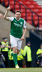 Grant Holt celebrates his goal for Hibs