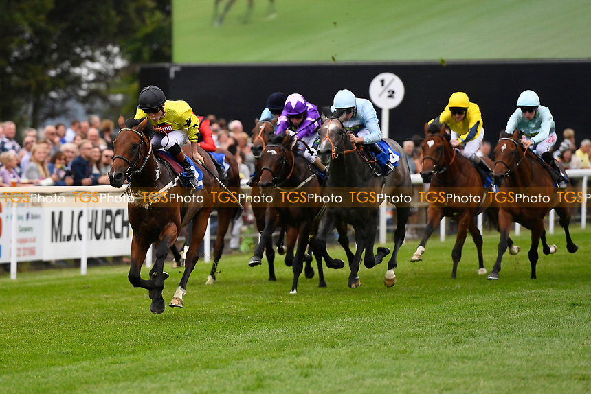 Winner of The Bathwick Tyres EBF Novice Stakes,Beringer ridden by Finley Marsh and trained by Alan King during Ladies Evening Racing at Salisbury Racecourse on 15th July 2017