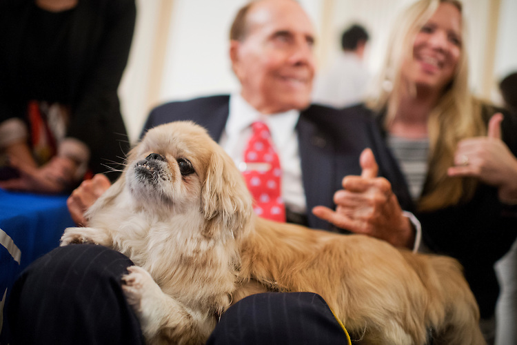 "UNITED STATES - JULY 30: Former Sen. Bob Dole, R-Kan., pets ""Milo"" during the ASPCA's Fourth Annual Paws for Celebration pet adoption event in Cannon Building, July 30, 2015. (Photo By Tom Williams/CQ Roll Call)"