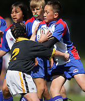 121003 Rugby - Lower North Island Primary Schools Tournament