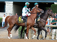 October 06, 2018 : #6 Happy Like a Fool and John Velazquez in the 38th running of the Thoroughbred Club of America (Grade 2) $250,000 at Keeneland Race Course on October 06, 2018 in Lexington, KY.  Candice Chavez/ESW/CSM