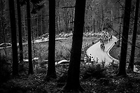 peloton up the Col du Rosier<br /> <br /> 104th Li&egrave;ge - Bastogne - Li&egrave;ge 2018 (1.UWT)<br /> 1 Day Race: Li&egrave;ge - Ans (258km)