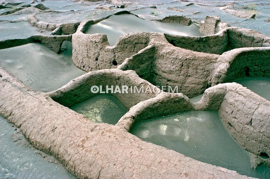 Ruínas de Tullor no Deserto do Atacama. Chile. 2004. Foto de Maristela Colucci.