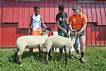 Mulugeta Kiflom and Robel Haile, both 13-year old resettled refugees from Ethiopia, brace their sheep on a farm in Linville, Virginia, on July 17, 2017, as Holly Mumaw inspects the animals' posture. Mumaw volunteers to help refugee youth, resettled in the area by Church World Service, prepare to show sheep and goats in a county fair.<br /> <br /> Photo by Paul Jeffrey for Church World Service.