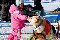 Little Anita Jemewouk pets a Bill Pinkham dog as they rest at the Elim checkpoint during the 2010 Iditarod