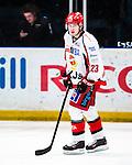 Stockholm 2013-12-28 Ishockey Hockeyallsvenskan Djurg&aring;rdens IF - Almtuna IS :  <br /> Almtuna Jesper Danielsson  <br /> (Foto: Kenta J&ouml;nsson) Nyckelord:  portr&auml;tt portrait