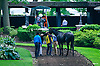 Aquaphobia before The Stanton Stakes at Delaware Park on 6/22/16
