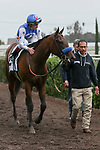 CERRITOS, CA  DECEMBER 07:  #2 Bast, ridden by Drayden Van Dyke, returns to the connections after winning The Starlet (Grade 1) on December 7, 2019, at Los Alamitos Race Course in Cerritos, CA..  (Photo by Casey Phillips/Eclipse Sportswire/CSM)
