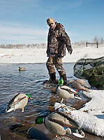 Lane Kugler (cq) puts away his duck decoys after a hunting trip near Grand Island, Nebraska, Sunday, December 4, 2011. Hunting Duck and White Tail Deer...Photo by Matt Nager