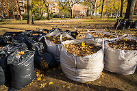 Bags of Autumn leaves destined for mulch collected in Washington Square Park in New York on Sunday, December 4, 2016. (© Richard B. Levine)