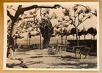 """Europe/France/Provence-Alpes-Côte d'Azur/13/Bouches-du-Rhône/Marseille:  Restaurant """"Le Petit Nice,""""160, corniche Kennedy  dans les années 1960"""