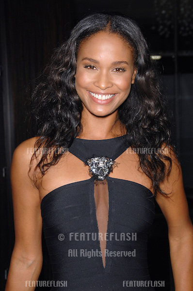 JOY BRYANT at the 2006 American Cinematheque Gala where George Clooney was presented with the 21st Annual American Cinematheque Award at the Beverly Hilton Hotel..October 13, 2006  Los Angeles, CA.Picture: Paul Smith / Featureflash