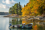 Fall foliage at Gordon's Landing in Sullivan, Maine, USA
