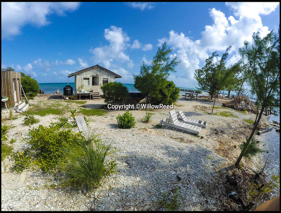 BNPS.co.uk (01202 558833)<br /> Pic: WillowReed/BNPS<br /> <br /> Unleash your inner Robinson Crusoe with an idyllic Caribbean island off the coast of Belize up for grabs.<br /> <br /> Brit Willow Reed, 40, is selling the stunning island of Virginia Caye, a nature haven of just under four acres, through eBay.<br /> <br /> The starting bid is £400,000 or, if they don't want the risk of losing out to a higher bidder, someone could pay the 'buy it now' price of £750,000.<br /> <br /> For that the lucky buyer will get their own private piece of paradise where they can escape the British weather or they could invest more money to turn the island into a popular tourist retreat.