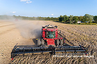 63801-13412 Harvesting soybeans in fall-aerial  Marion Co. IL