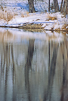 Reflections of trees in pond at Sandy Channel State Recreation Area, Buffalo County, Nebraska