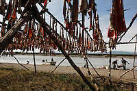 Fishing camp scene of salmon drying on racks.