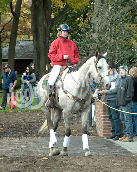 Nemo before The Justakiss Stakes on 11/6/10