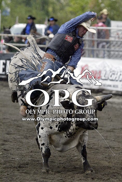 24 August 2008:   Fred Boettcher from Rice Lake, Wisconsin rode the bull 415 to a score of 84 in the first round of the Dodge Extreme Bulls in Bremerton, Washington.