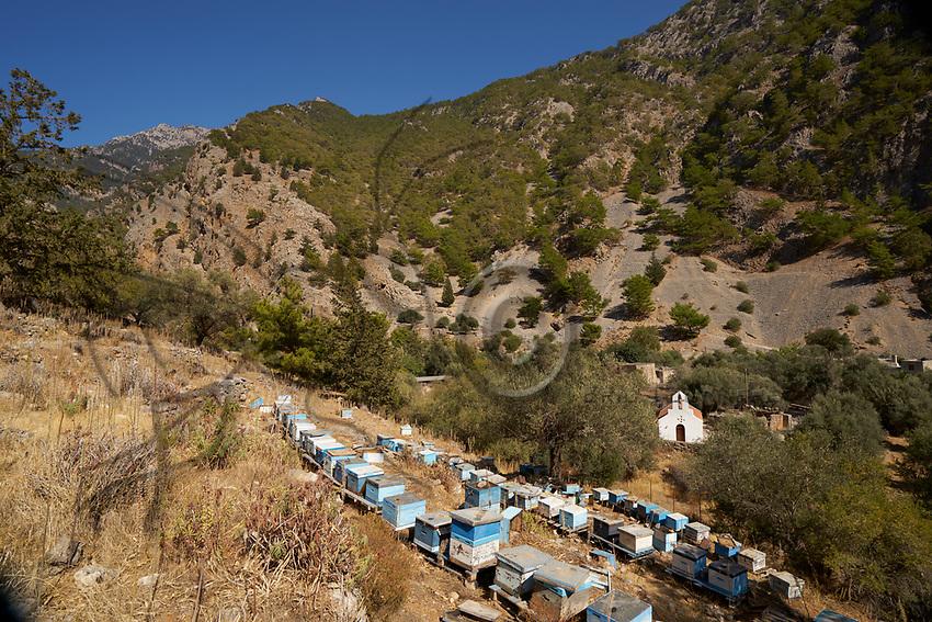 A colorful apiary at the entrance to the gorges of Samaria in Crete. Crete has been known for its thyme honey since Antiquity.<br /> Un rucher color&eacute; &agrave; la sortie des gorges de Samaria en Cr&ecirc;te. La Cr&ecirc;te est r&eacute;put&eacute;e pour son miel de thym depuis l&rsquo;antiquit&eacute;.