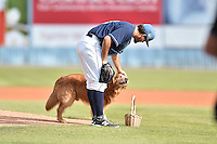 Asheville Tourists starting pitcher Helms Rodriguez (33) receives the game ball from Jake the Diamond Dog before a game against the Rome Braves on May 16, 2015 in Asheville, North Carolina. The Braves defeated the Tourists 6-3. (Tony Farlow/Four Seam Images)