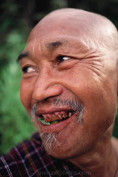 A monk with severe betel nut damage to his teeth and gums, caused by chewing the mildly narcotic vegetation, in Shingkhey Village, Bhutan. From Peter Menzel's Material World Project.