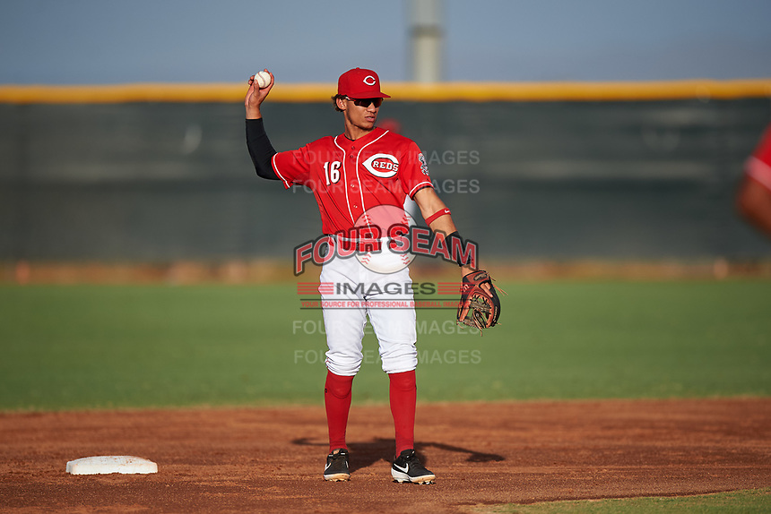 AZL Reds second baseman Sebastian Almonte (16) throws to the pitcher during an Arizona League game against the AZL Athletics Green on July 21, 2019 at the Cincinnati Reds Spring Training Complex in Goodyear, Arizona. The AZL Reds defeated the AZL Athletics Green 8-6. (Zachary Lucy/Four Seam Images)