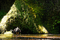 Man walking in Eagle Creek just below Punchbowl Falls, Columbia River Gorge National Scenic Area, Oregon, USA