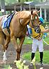 winning at Delaware Park on 5/28/12