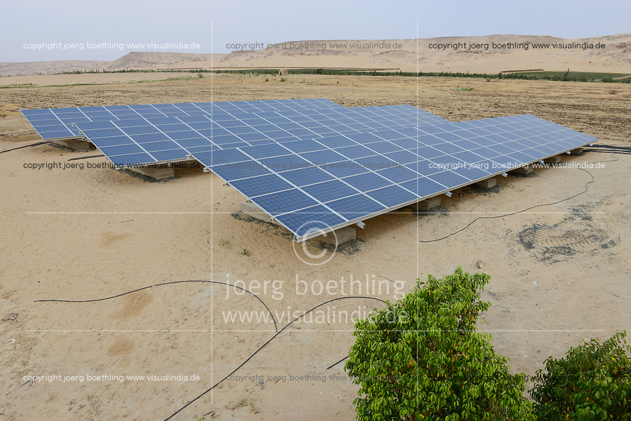 EGYPT, Bahariyya Oasis, Sekem organic farm, project greening the desert, solar field to pump water and field with compost / AEGYPTEN, Bahariyya Oase, Sekem Biofarm, Landwirtschaft in der Wueste
