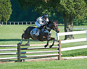 Fair Hill Races - 05/23/2015