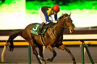 11-18-17 Tokyo Sports Hai Nisai Stakes Tokyo Japan